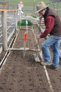 Tri uses his homemade seeder to seed the onion bed