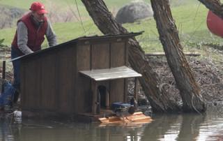 Nancys-duck-house-resize