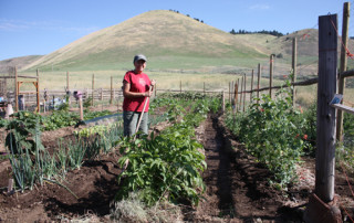 nancy-in-garden-resize