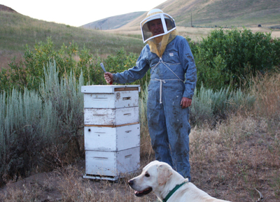 Extracting honey made simple – Entry #128