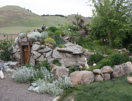 Root Cellar Construction – Part 2 – Getting started