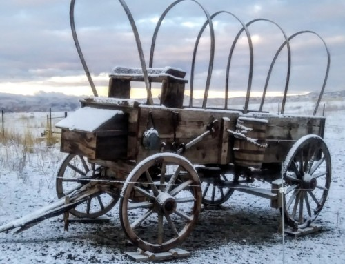 An Oregon Trail Wagon – Another stroke on the canvas of Timber Butte