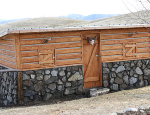 Building a lambing shed for Nancy – Entry #220