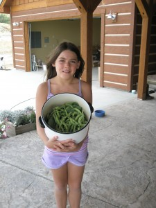 Hope harvests the green beans