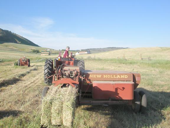 My first morning of baling hay