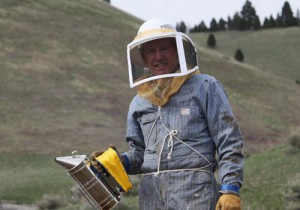 resize-bee-guy1-300x210